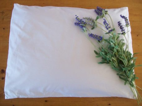 Organic Buckwheat Pillow Lavender