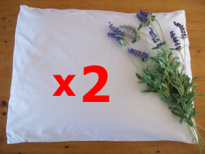 Organic Buckwheat Pillow Discount Sale