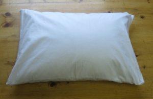 Organic Buckwheat Travel Pillow
