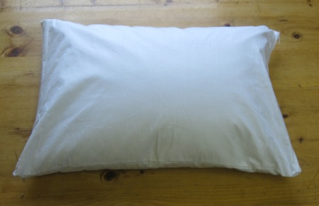 Organic Buckwheat Travel Pillow