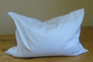 Organic Buckwheat Pillow for Kids