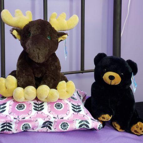 Mr. L-OMA Buckwheat Moose and Mr. L-OMA Buckwheat Bear