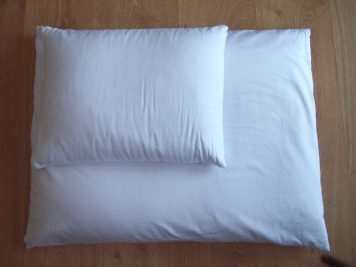 Organic Buckwheat Pillow Set